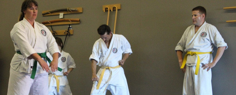 Adult Karate is excellent for fitness, self defense and stress relief.